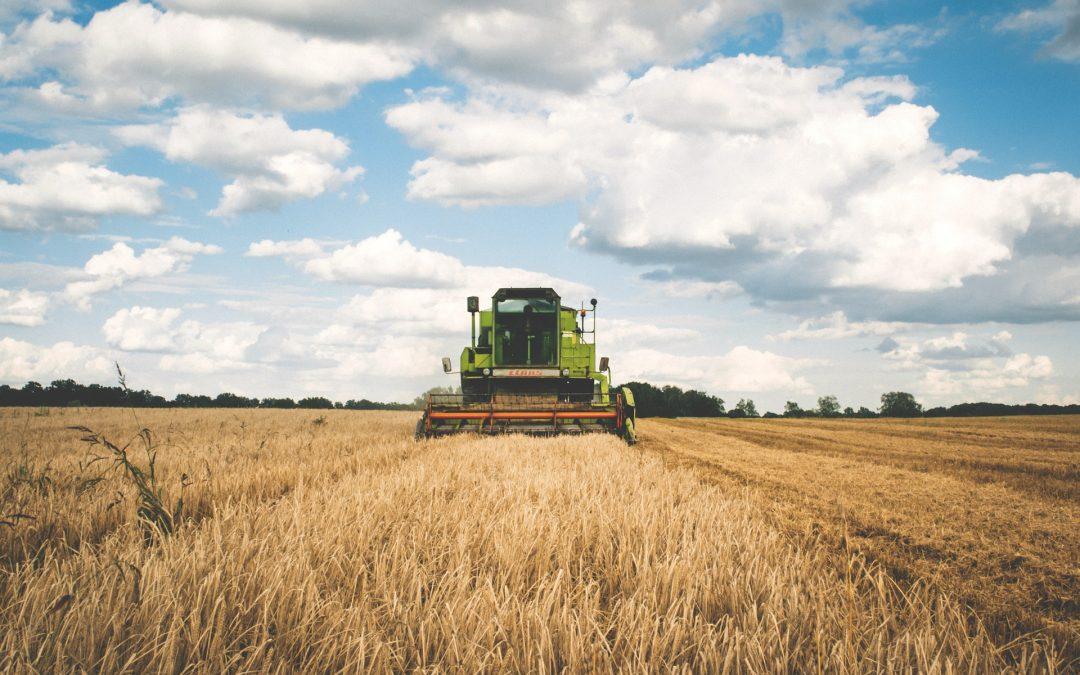 Comment investir dans les terres agricoles